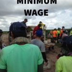 YOU NEED TO KNOW YOUR LEGAL MINIMUM SALARY FOR PICKERS IN AUSTRALIA!!
