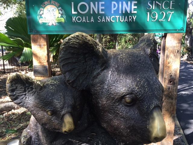 ローンパインコアラ保護区