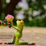 ギリホリ帰国後の不安を解消!結婚、就職、英語、年下との付き合いはどうすべき?